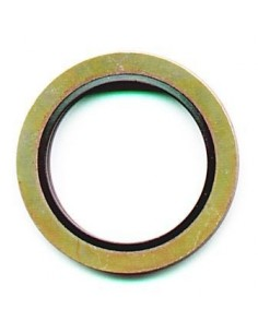 "3/8"" BSP Standard Bonded Seal"