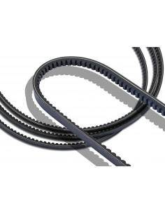 AVX 10X1250 Cogged Raw Edge V Belt