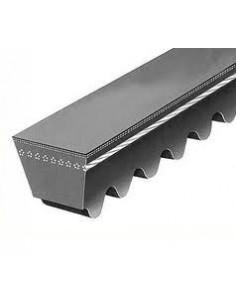 XPB1600 17 x 13 x 1544 mm Internal, Cogged V Belt Also Known as SPBX1600