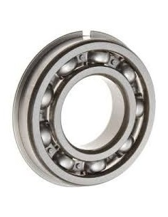 6304-NR Open Bearing with Snap Ring