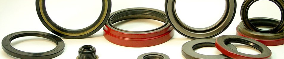 Oil & Grease Seal