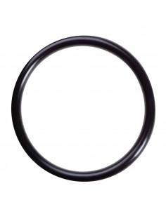 34 mm x 1 mm O-Ring