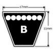 B Section V Belt