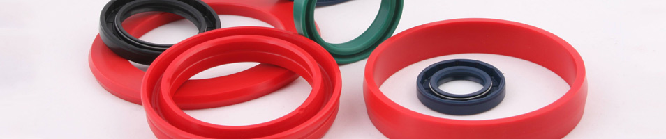 Hydraulic & Pneumatic Seals